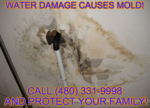 mold_removal_phoenix