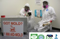 mold_remediation_gilbert_az
